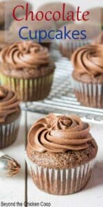 A chocolate frosted cupcake with several cupcakes behind it.
