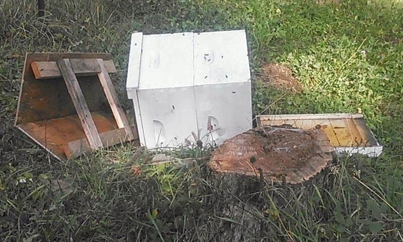 A bee hive knocked over with the lid and bottom of the hive.