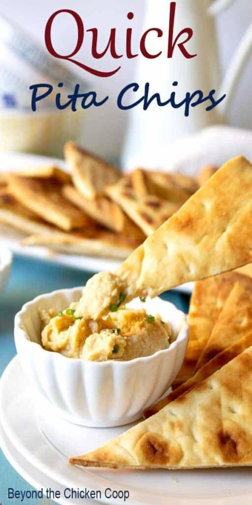 A small bowl of hummus with a pita chip.