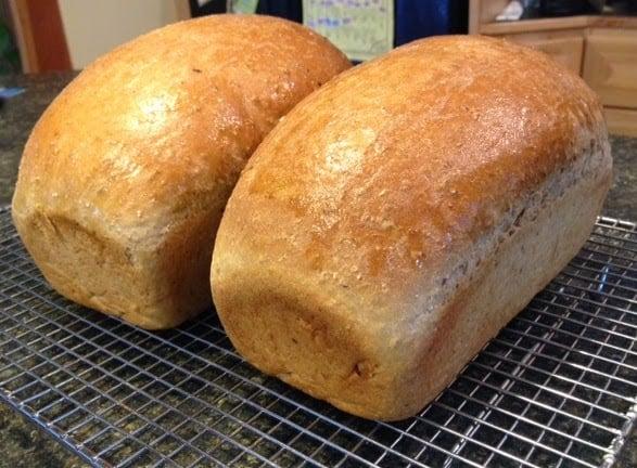 Whole Wheat White Bread