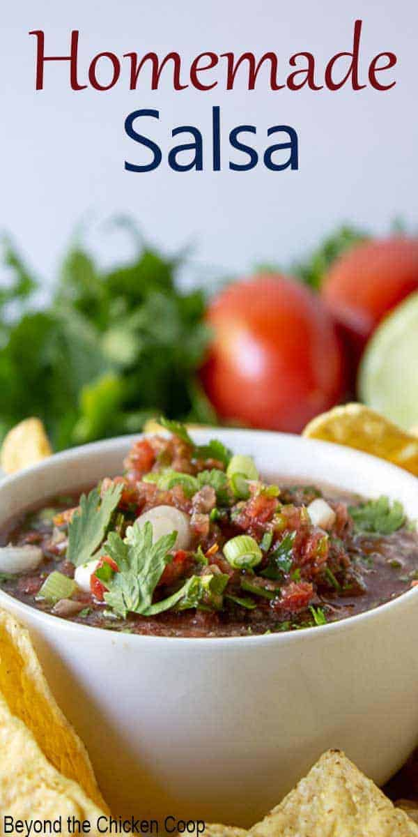 A bowlful of homemade salsa topped with cilantro.