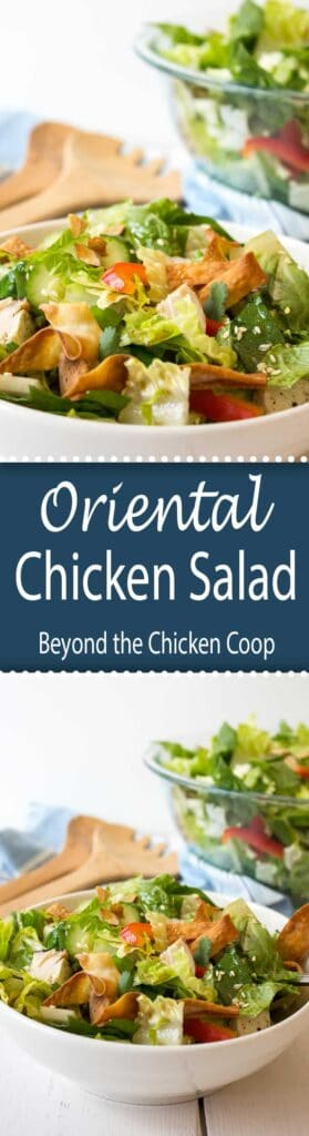 Delicious oriental chicken salad with chunks of chicken and a light oriental dressing.
