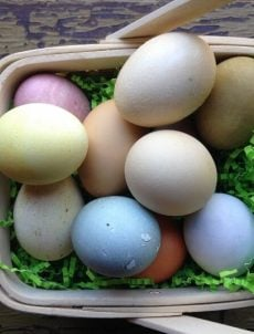 Basket of naturally dyed eggs