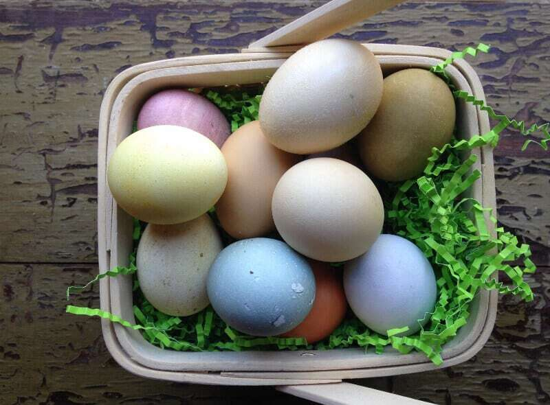 Basket of Eggs dyed with natural dyes