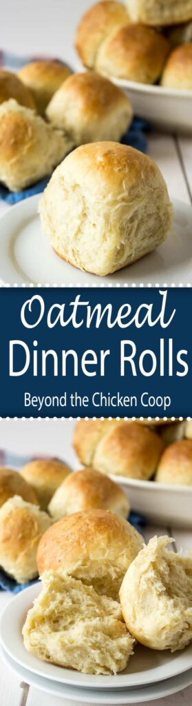Homemade dinner rolls make everyday extra special. These oatmeal dinner rolls are a family favorite.