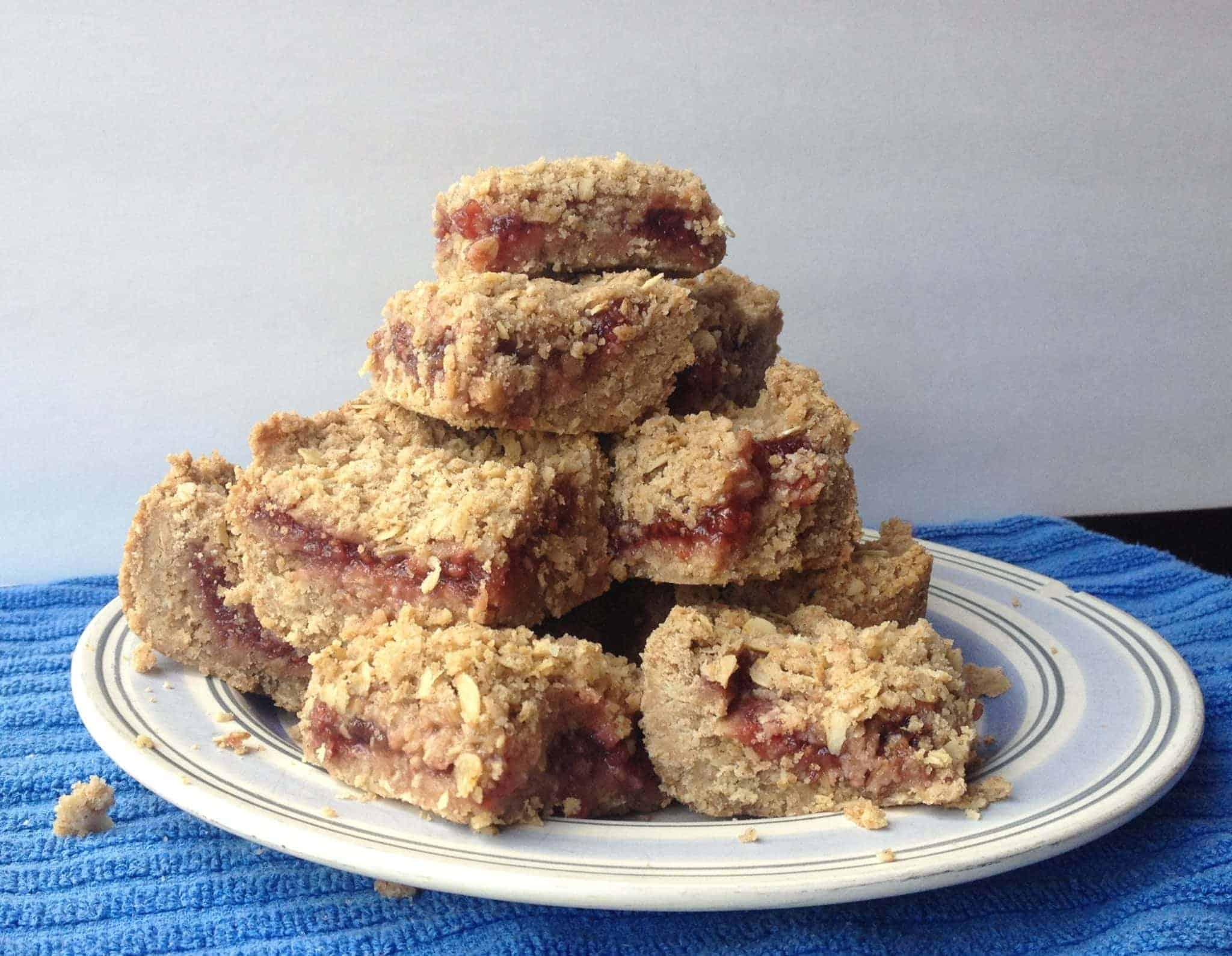 Raspberry Oat Bars - Beyond The Chicken Coop
