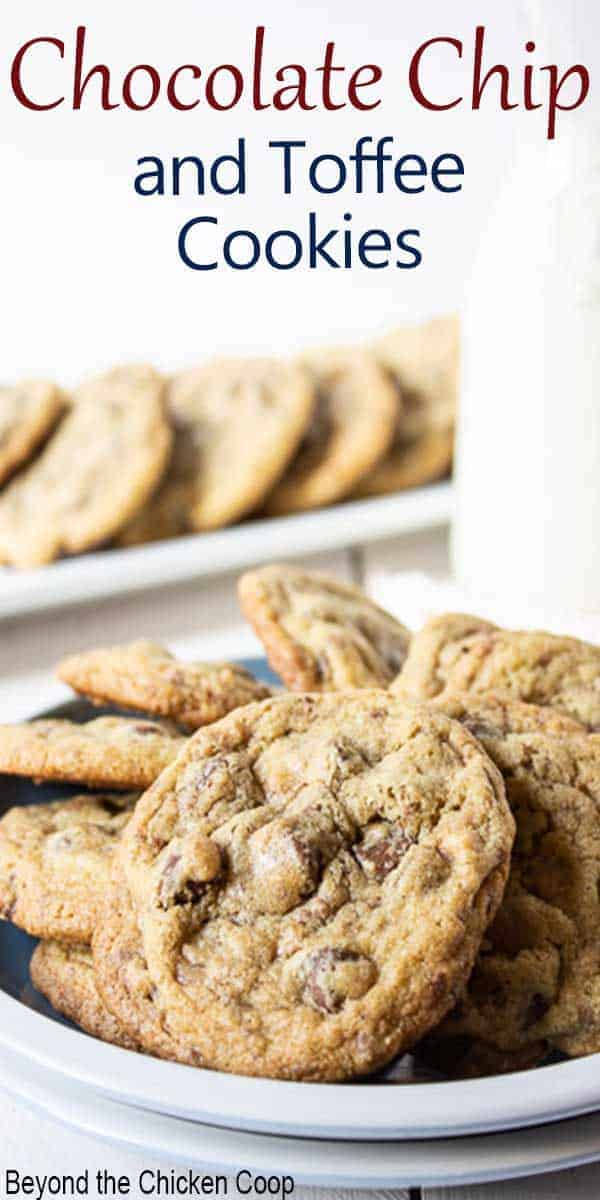 A white plate filled with chocolate chip cookies.