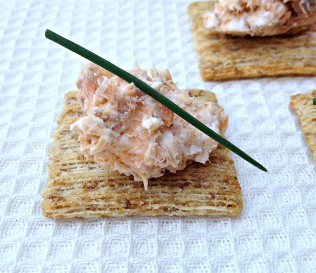 Celery And Smoked Salmon Cream Cheese Dip Recipes — Dishmaps