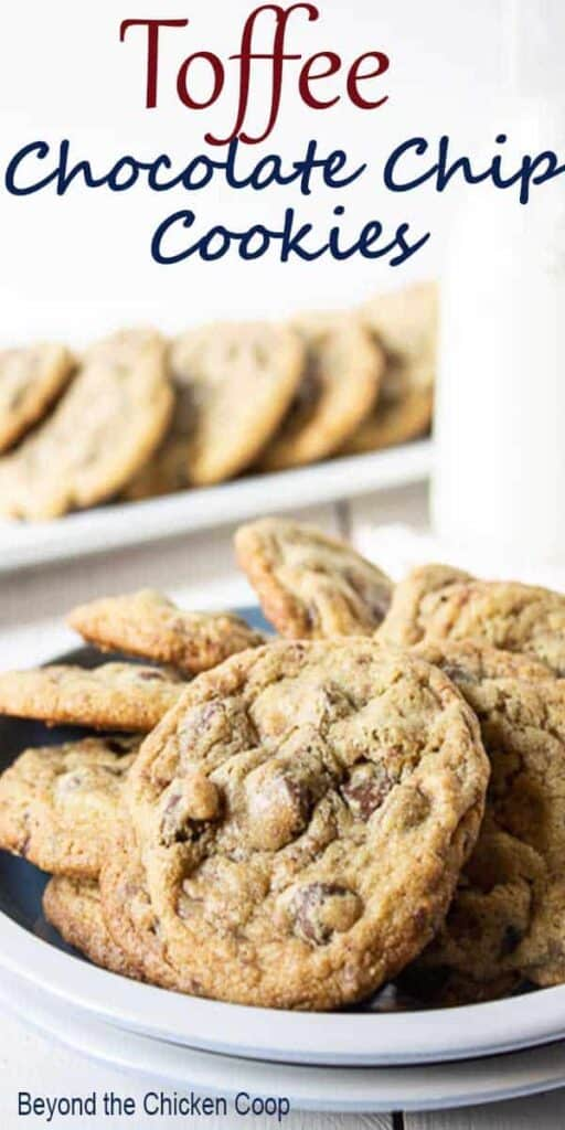 A plateful of chocolate chip cookies.