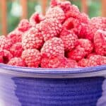 A blue bowl filled with frozen raspberries.