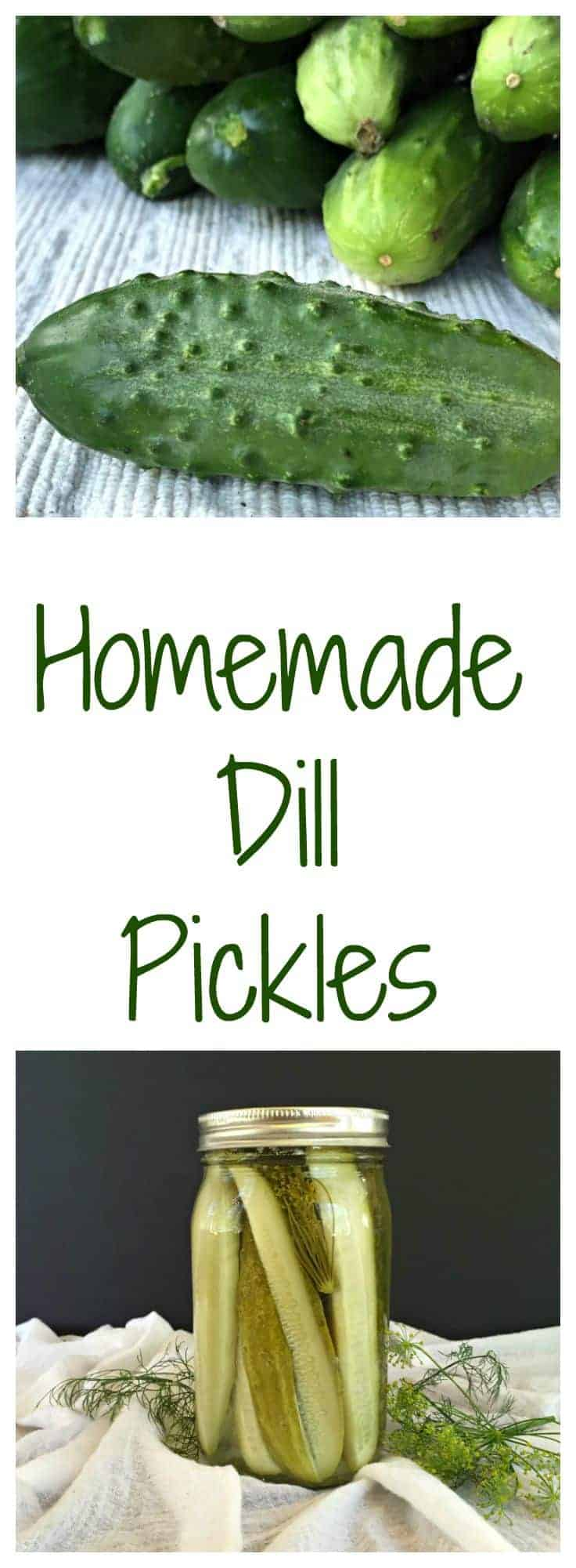 Homemade Dill Picles
