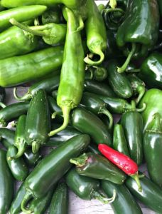 An assortment of peppers from the garden. Learn how to roast and freeze chili peppers.