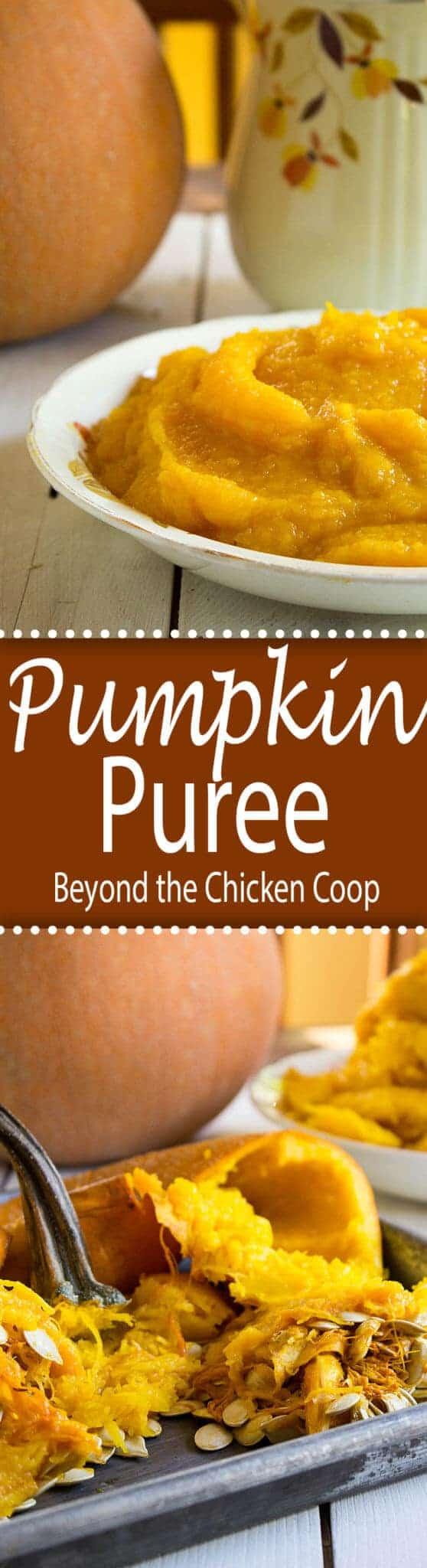 Pumpkin puree in a small bowl.