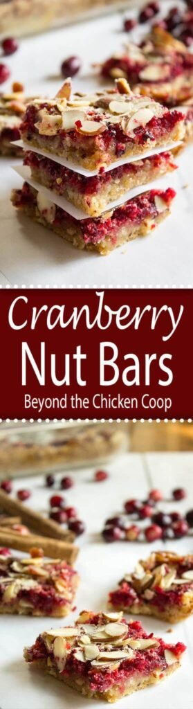 Cranberry Nut Bars made with fresh cranberries and almonds!