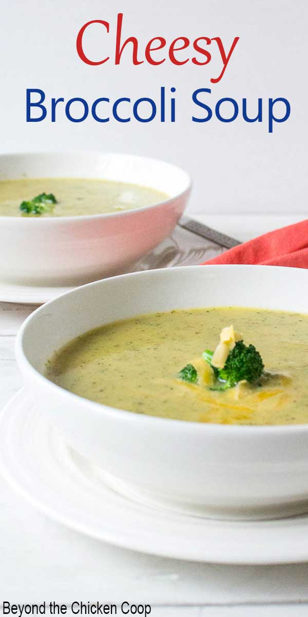 A bowl of creamy soup topped with shredded cheese and broccoli.