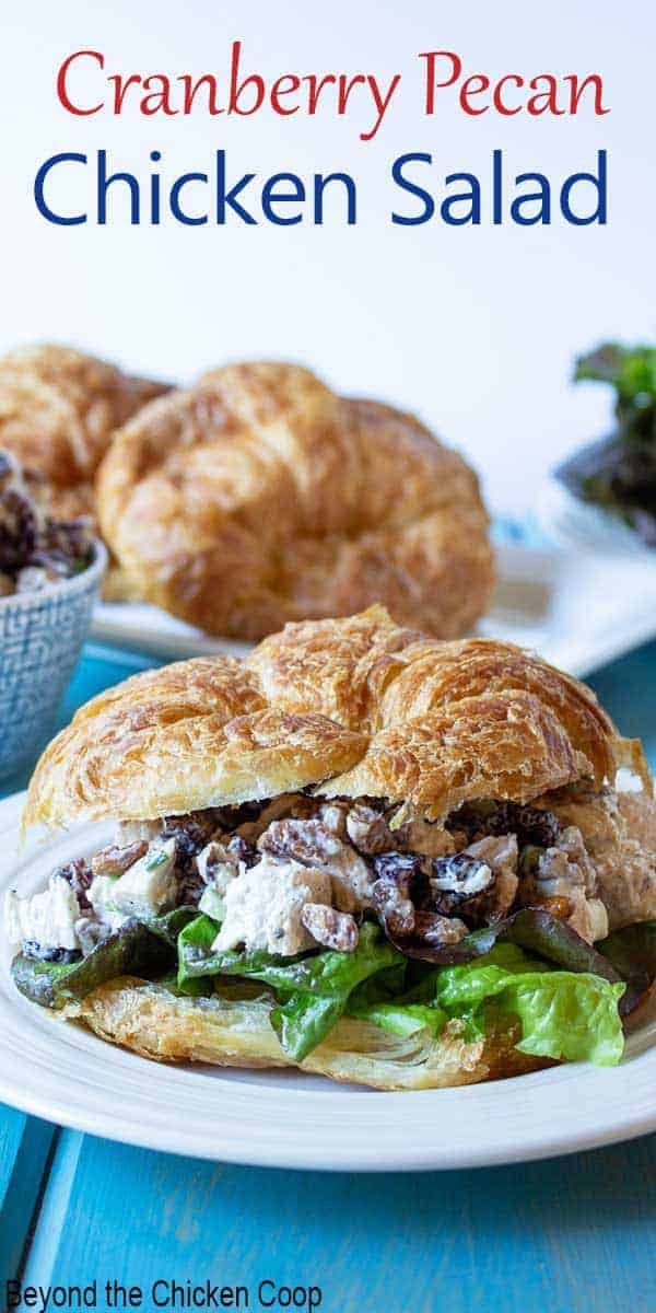 A croissant filled with a chicken salad with cranberries and pecans.
