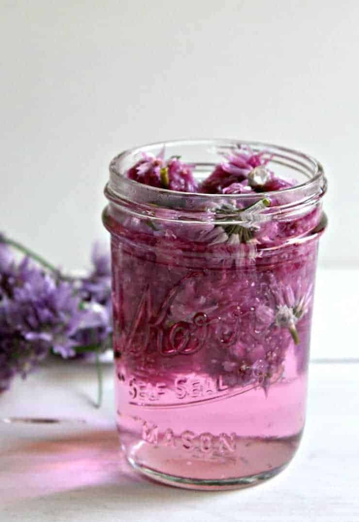 Chive Vinegar blossoms in a small canning jar