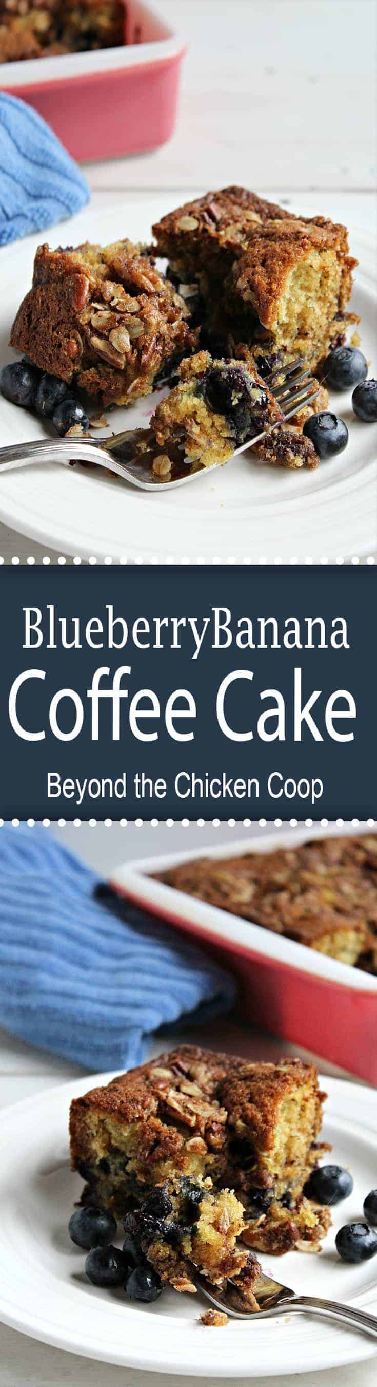 Blueberry banana coffee cake is a great way to start the day!