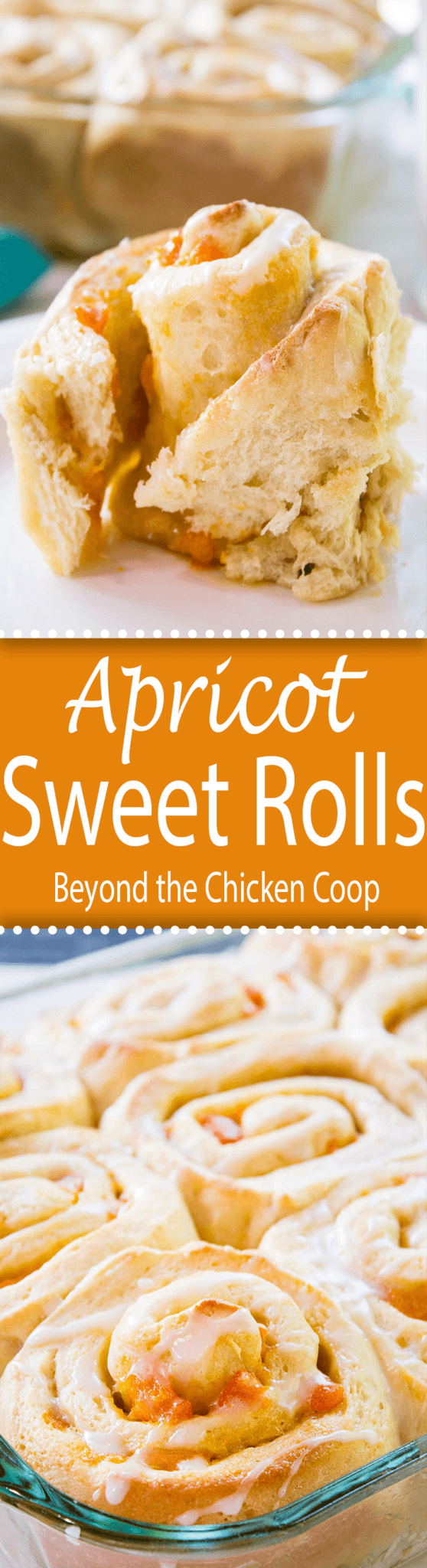 A delicious breakfast treat, apricot sweet rolls. beyondthechickencoop.com