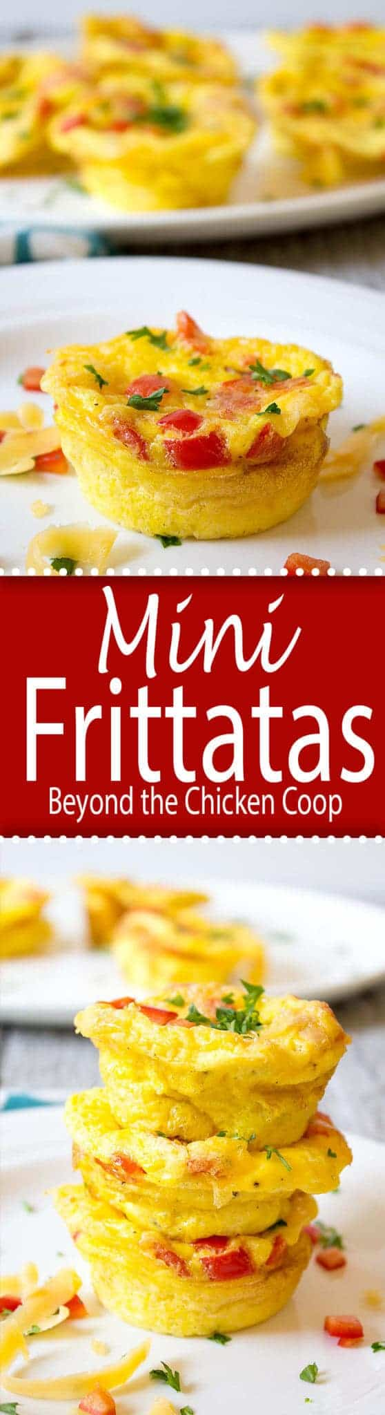 Mini Frittatas are perfect for breakfast and for making ahead of time and reheating when you are ready to eat. beyondthechickencoop.com