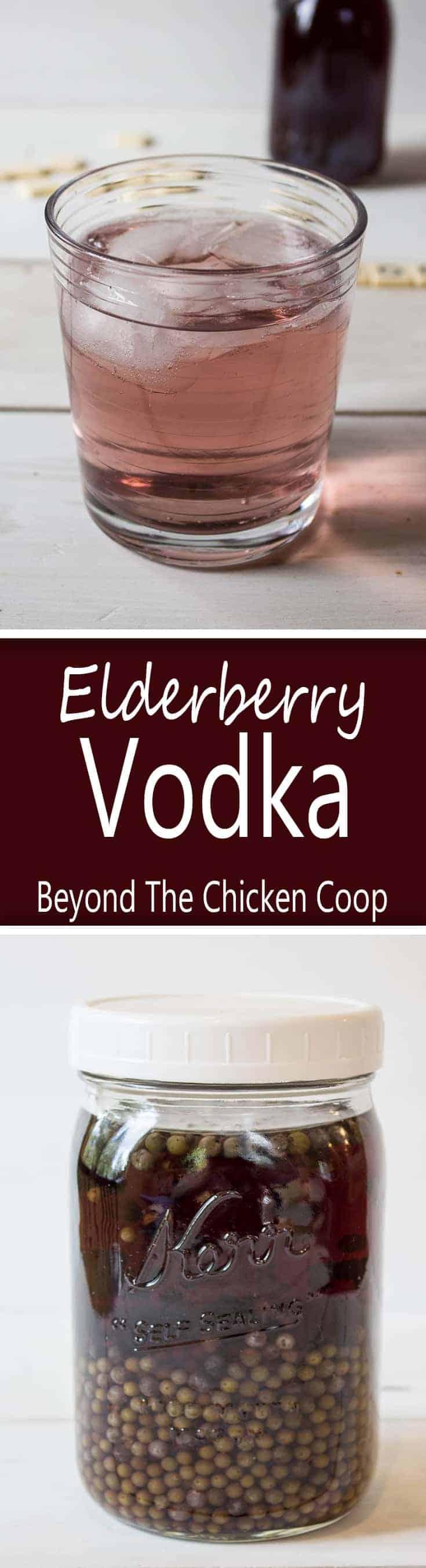 Infused vodka flavored with wild elderberries.