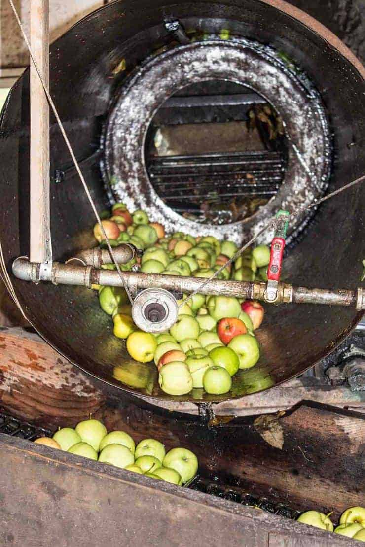 Apple Cider Making