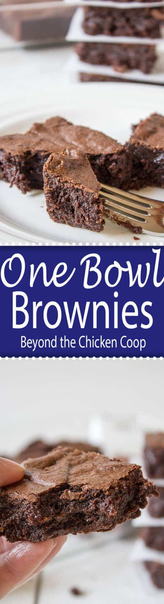 One Bowl Fudgy Brownies. Beyond the Chicken Coop