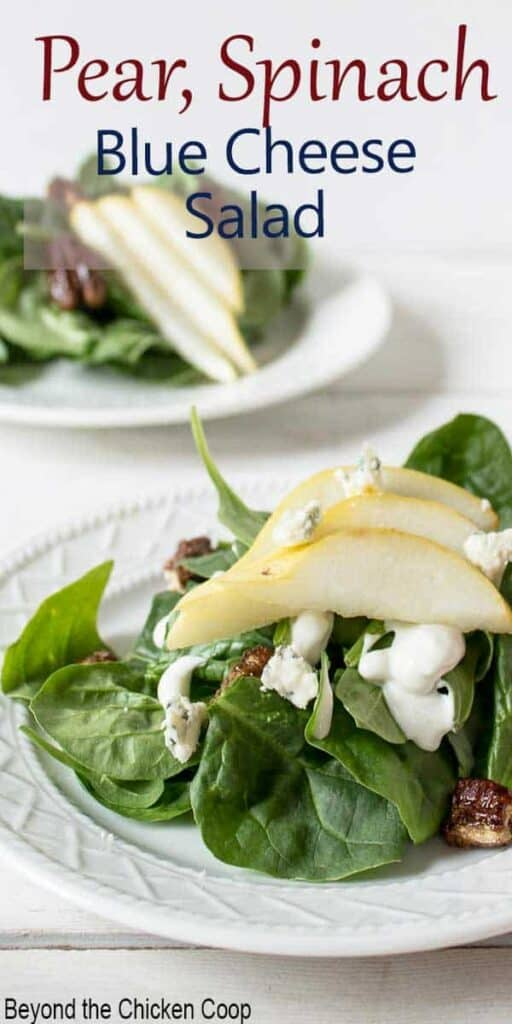 Fresh salad topped with blue cheese and slice pears.