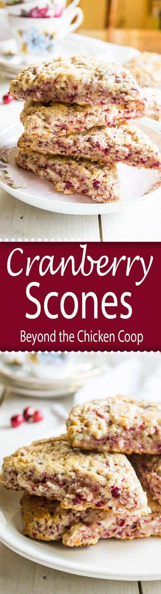 Cranberry Scones are perfect for breakfast or a midday snack!