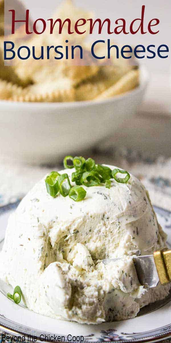 A cheese ball topped with fresh chopped green onions.