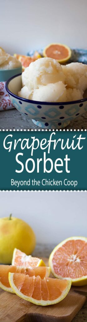 Tart and refreshing grapefruit sorbet.