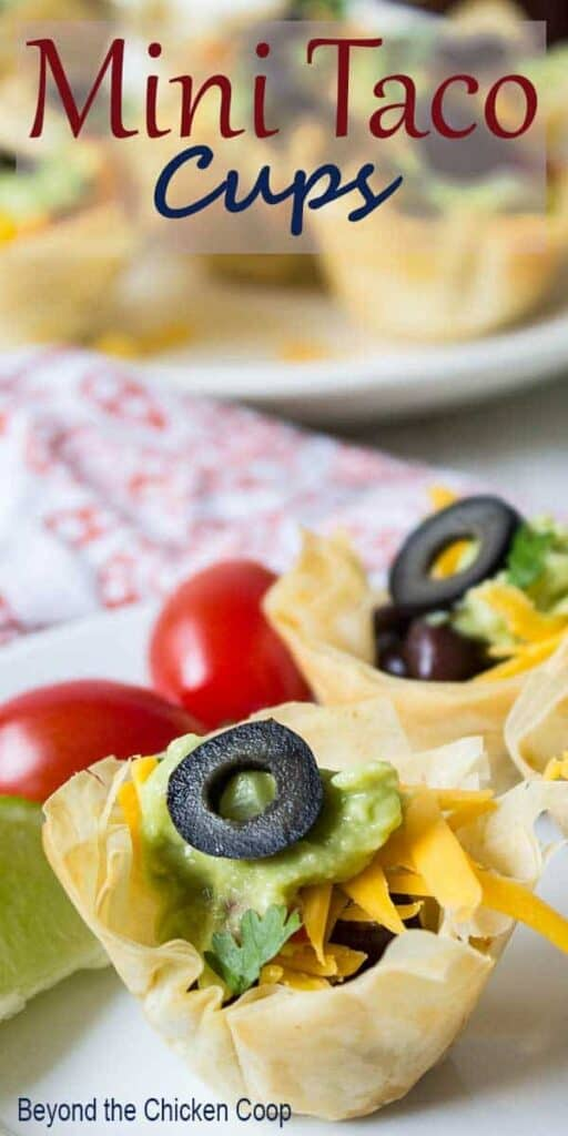 Mini shells filled with black beans and cheese.