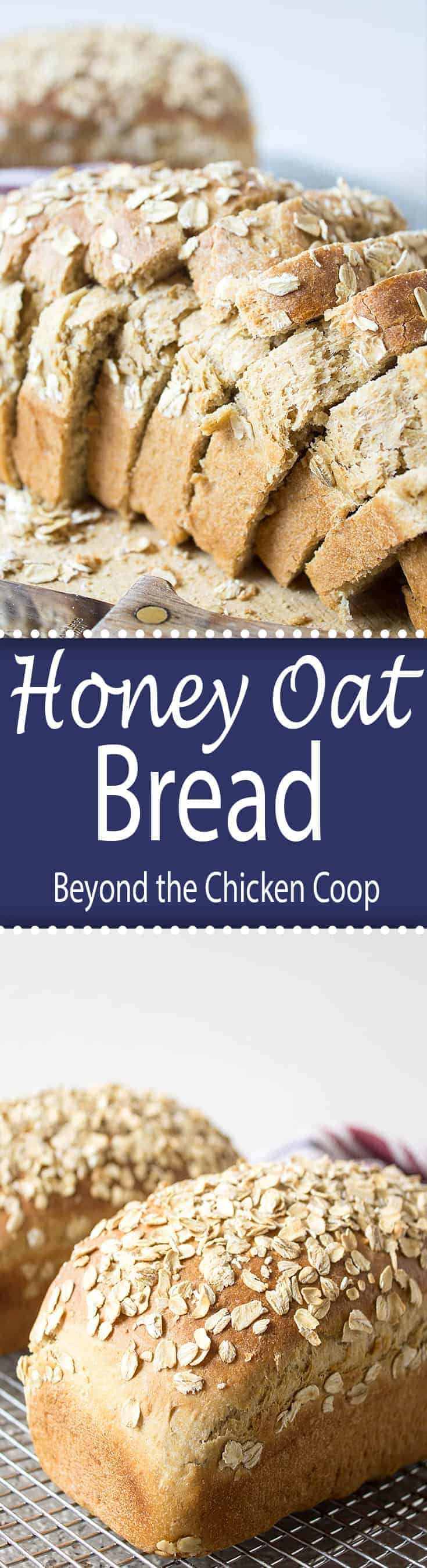 Homemade Honey Oat Bread made with oatmeal. This recipe makes two delicious loaves of bread perfect for sandwiches or for toast. #bread #homemadebread #honeyoat #baking