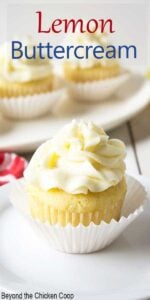A cupcake topped with a swirl of frosting.
