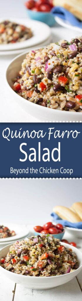 Quinoa Farro Salad with black beans and a light vinaigrette.