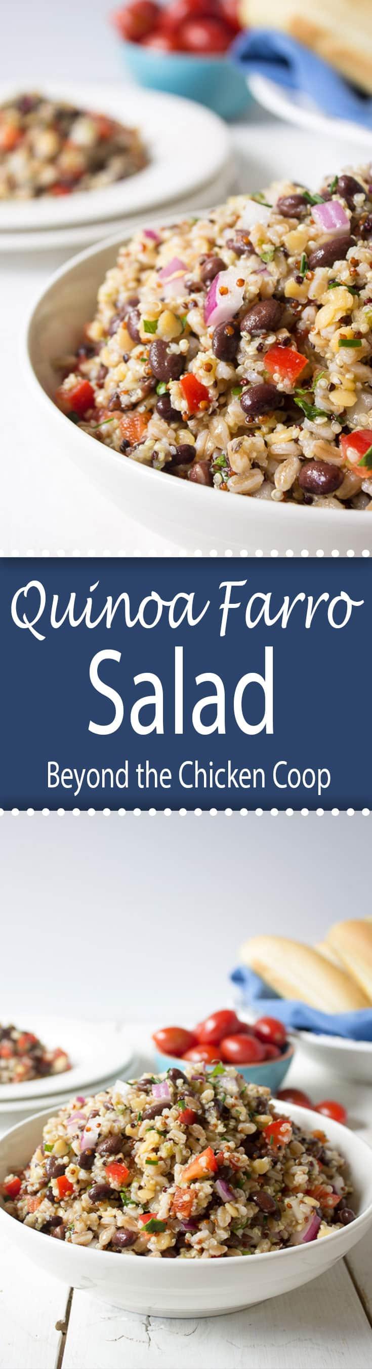 Quinoa Farro Salad with black beans and a light vinaigrette. #vegan #glutenfree #farro #farrosalad #quinoa