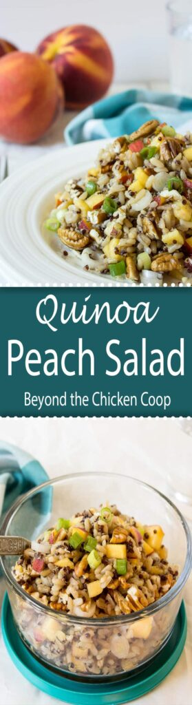 Quinoa, Brown Rice with fresh peaches and pecans is a delicious and filling salad.