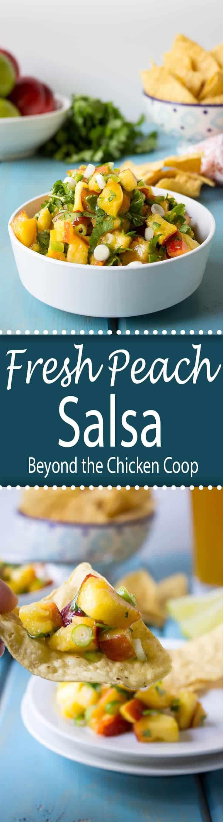 Fresh salsa with peaches, onions and cilantro.