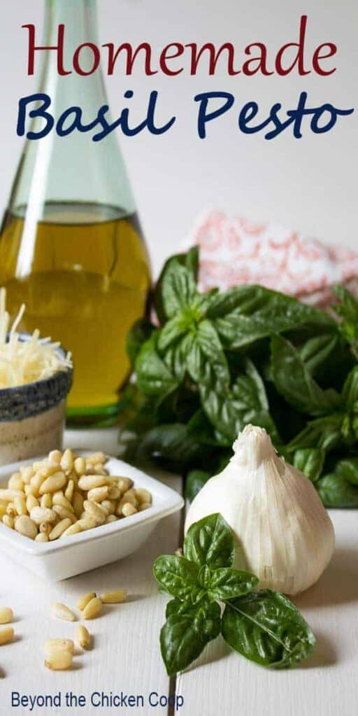 Fresh basil, a head of garlic, pine nuts and olive oil clustered together on a board.