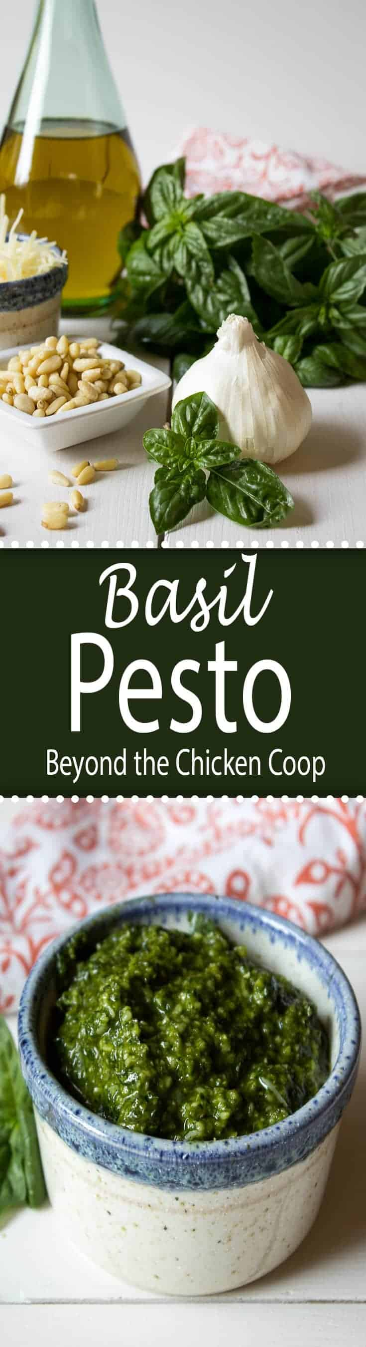 Fresh basil, garlic, pine nuts, olive oil and cheese make a delicious homemade basil pesto.