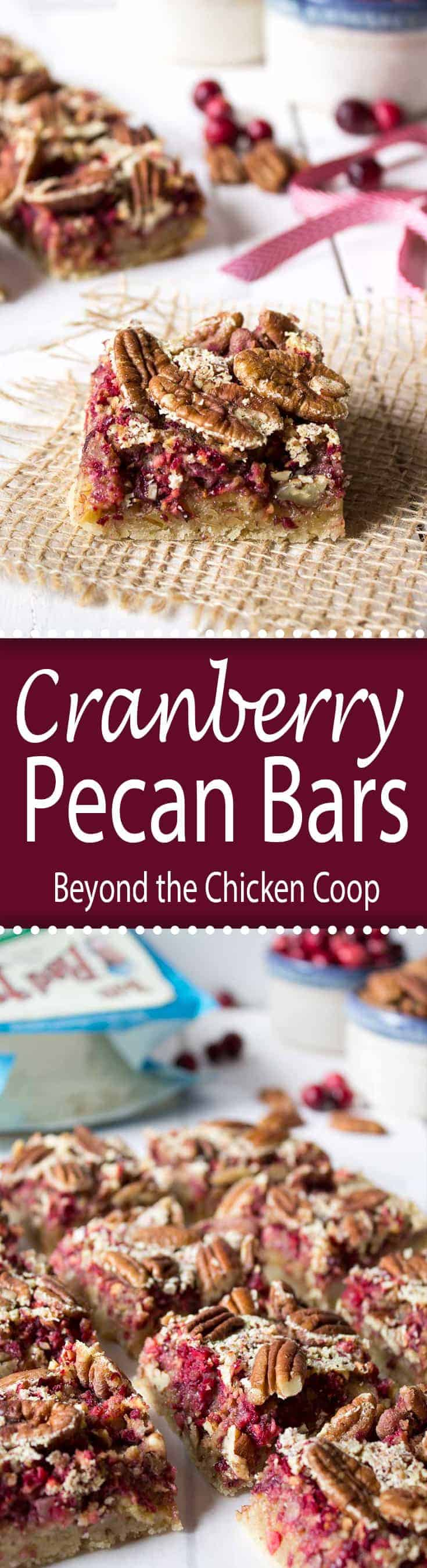 AD: Cranberry Pecan Bars are perfect for holiday giving and adding to a cookie tray.