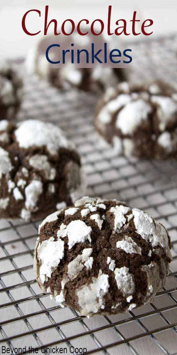 Chocolate cookies topped with powdered sugar.
