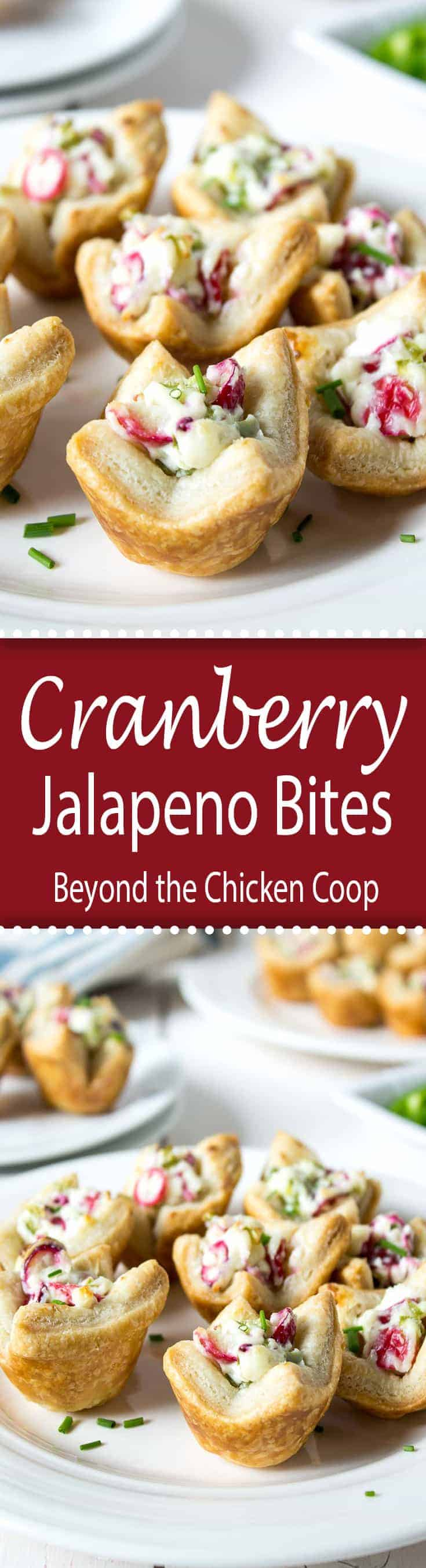 These cranberry jalapeno bites are a bit tart from the cranberries and a bit spicy from the jalapenos - a perfect combination.