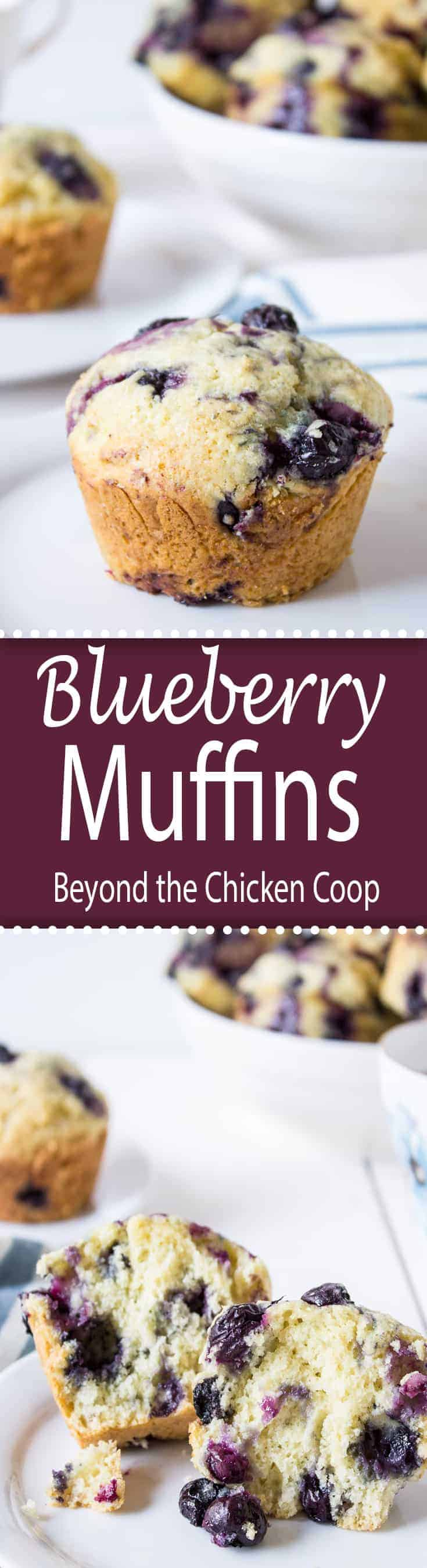 Homemade blueberry muffins are perfect for breakfast or a midday snack. #muffins #blueberry #blueberrymuffins