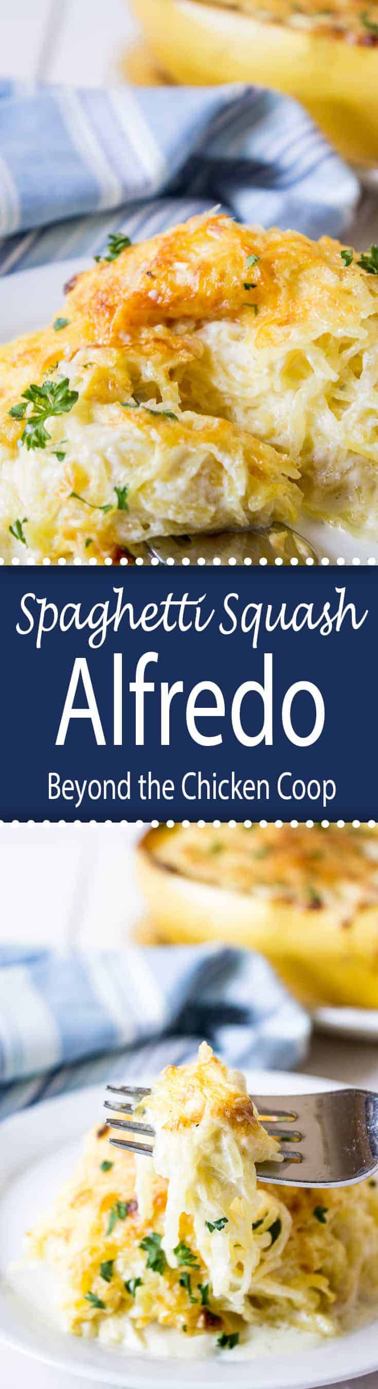 Spaghetti Squash Alfredo is cheesy and delicious.  #spaghettisquash #Alfredo #cheesybakedsquash #bakedspaghettisquash
