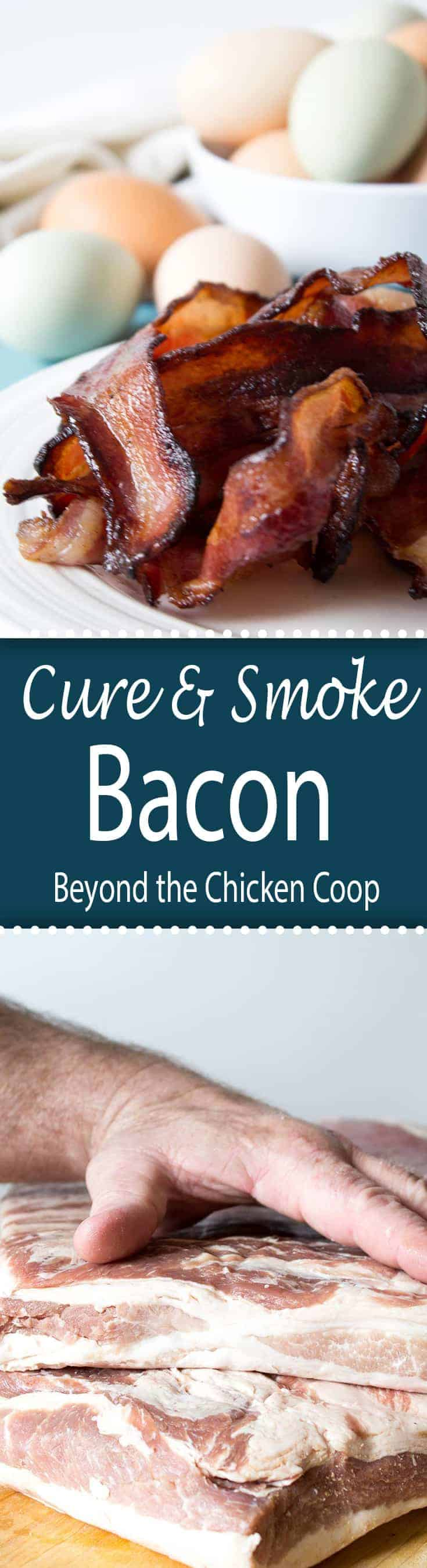 Make your own bacon! Instructions for curing and smoking your own bacon.