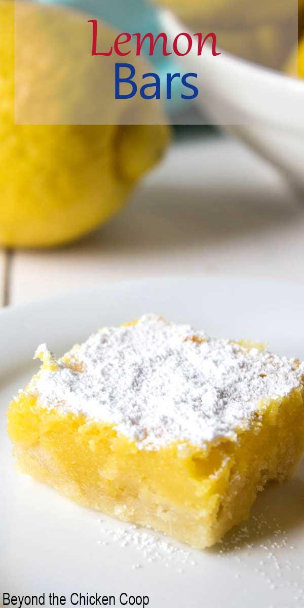 Lemon dessert topped with powdered sugar.