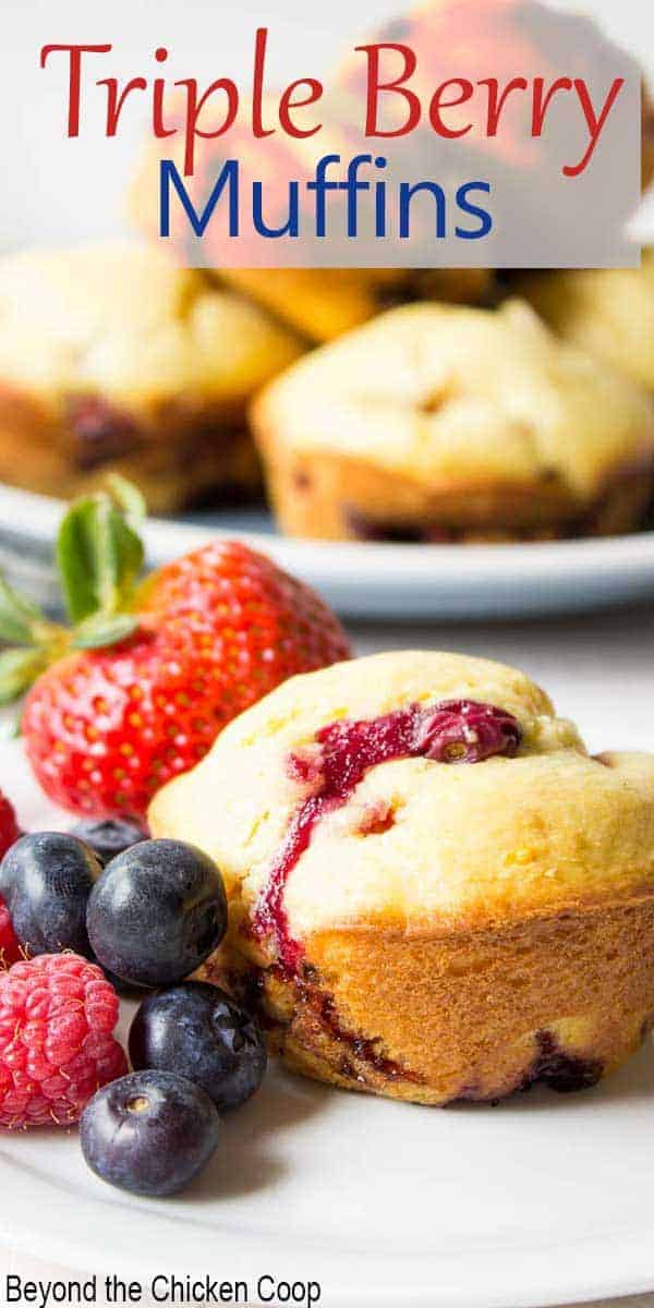 A muffin on a plate with fresh berries next to the muffin.