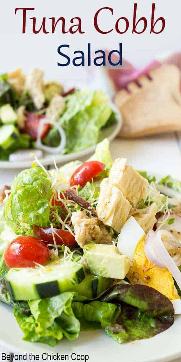 Salad with tuna, tomatoes and cucumbers.