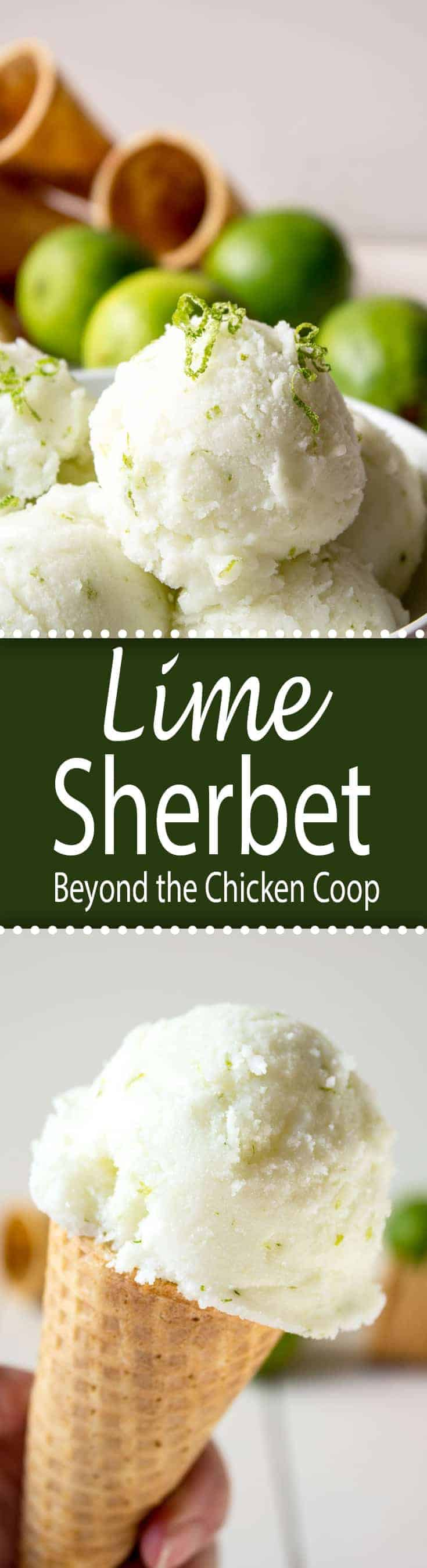 Homemade lime sherbet made with fresh squeezed limes, lime zest, sugar and milk. Pure lime flavor! #limes #sherbet #icecream #limesherbet #dessert #summertime